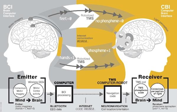 Schematic of brain-to-brain communication