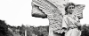 headerfair_laurel-hill-architectural-feature-1
