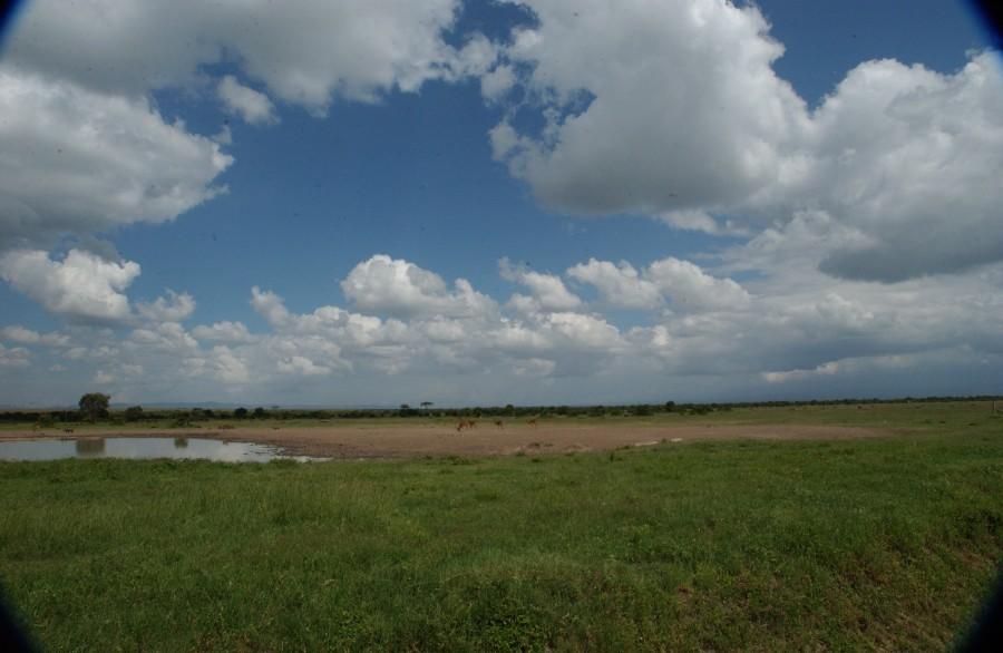 Cloud ring, Sweetwaters Reserve, Kenya.  December 2006.