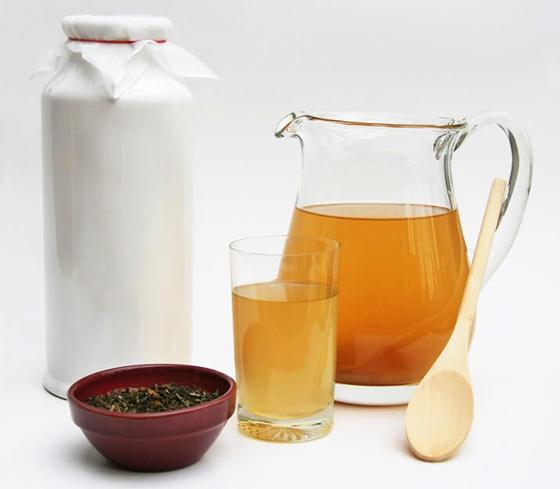 Kombucha and ingredients