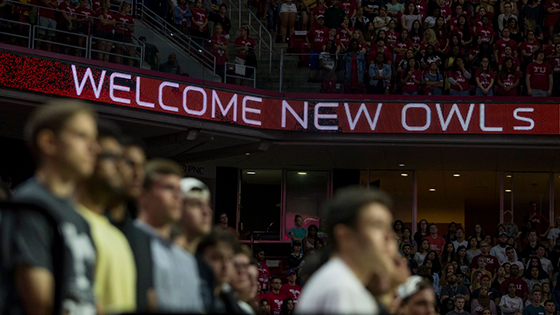 Welcome New Owls